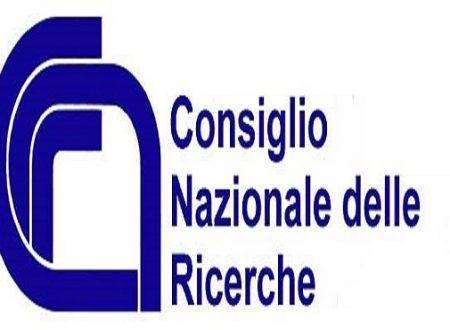 STRUTTURE IN LEGNO: NUOVE ISTRUZIONI DEL CNR